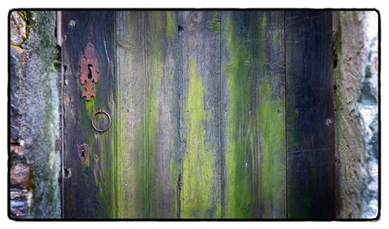 door_0