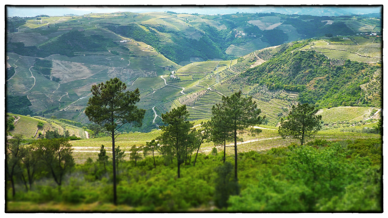 douro-valley