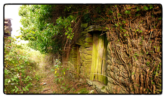 hobbit-house-silveira-de-cima