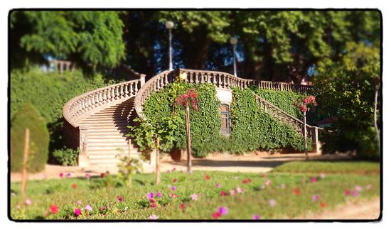 jardim-figueiro