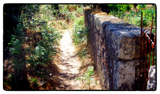 path-to-sepulturas