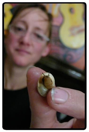 snail-close.jpg