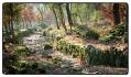 autumn-path-portugal